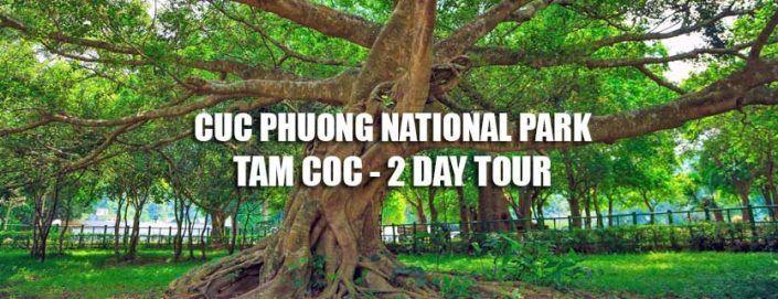 Cuc Phuong National park Tam Coc 2 day Ninh Binh tour