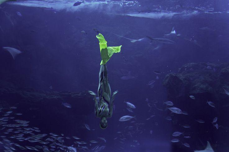 Mermaid: Aquatic water dance at 5 meters depth.  http://www.mattmacdonaldphoto.com