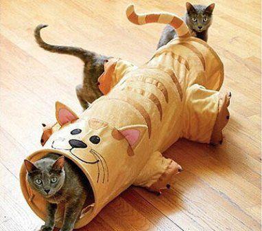 igrushki-for-cats2.jpg (382×336)