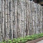 Je vous présente plusieurs clôtures de jardin qui sortent de l'ordinaire et que vous pourrez facilement recréer chez vous.