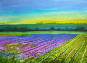 LavenderLand2