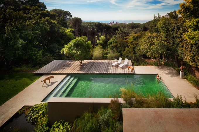 What a lovely backyard. Look at the interior. Just as lovely! Slick house in Cape Town.