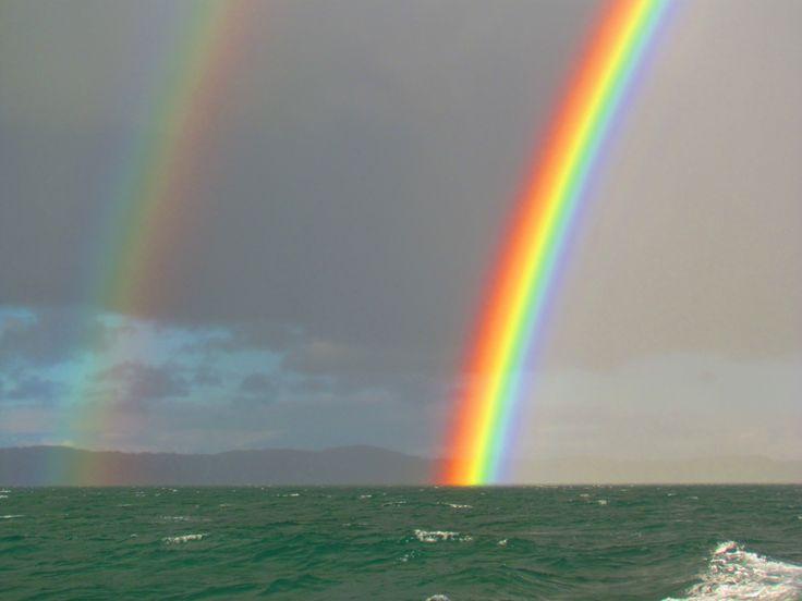 Rainbow on the Waitemata Harbour, Auckland. Photo by Sophia Egan-Reid.