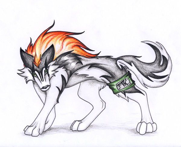 Anime Wolf Drawings Anime+wolf+drawings