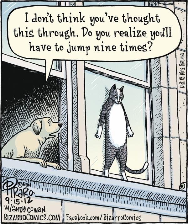 19 best Piraro: Cats images on Pinterest | Bizarro comic, Cat ...