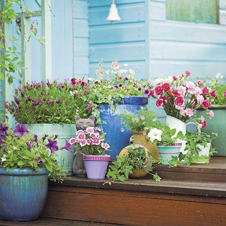 Maak een kleurrijk tafereel met verschillende soorten zomerbloeiers terras balkon for Maak een overdekt terras