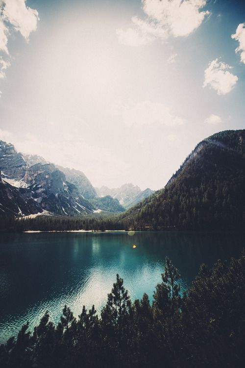 elenamorelli: { the lake beyond the pines }