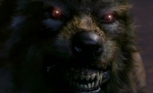 Google Image Result for http://werewolffreaks.webs.com/tooth-and-claw-werewolf-496.jpg