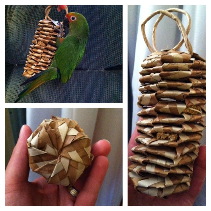 1000 Images About Diy Bird Toys On Pinterest Toys Play