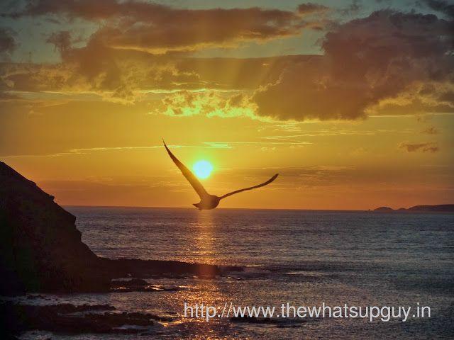 Sunset at St Phillips Island