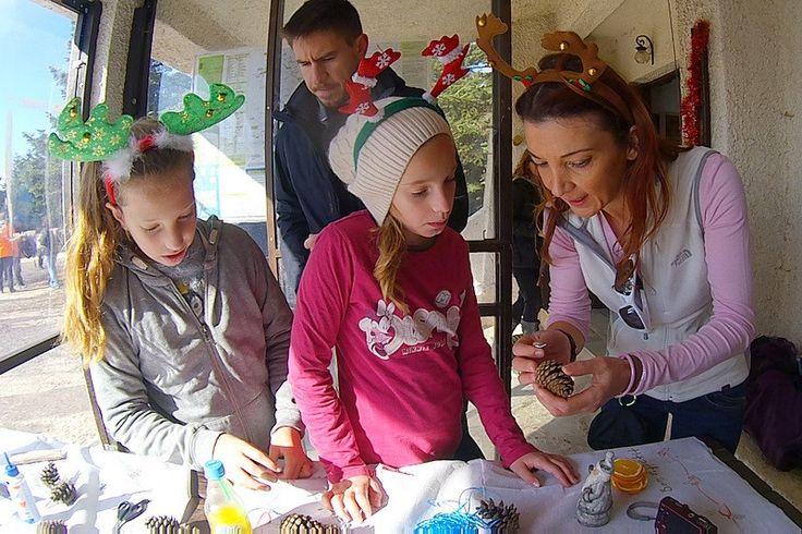 Στολισμός Χριστουγεννιάτικου ελάτου 05 12 15 στο Φλαμπούρι