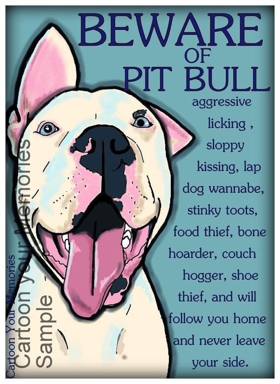 Hey, I found this really awesome Etsy listing at https://www.etsy.com/listing/154996203/beware-of-pit-bull