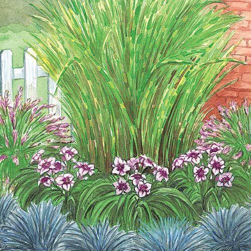 Buy corner grass garden at michigan bulb gardens a for Garden grass plants