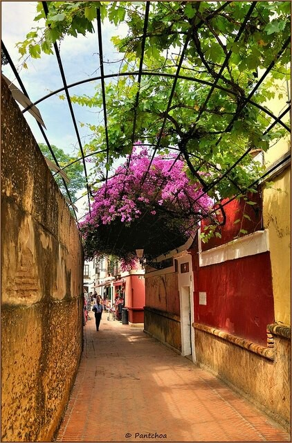 Calle del agua, Sevilla. Roman aquaduct on left.  Spain. Check out our latest posts about Spain on our travel blog: http://openupnow.net/category/travel/countries/spain/