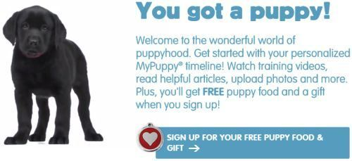 Purina MyPuppy.ca Free Welcome Kit with Puppy Food and Puppy ID Tag – Canada