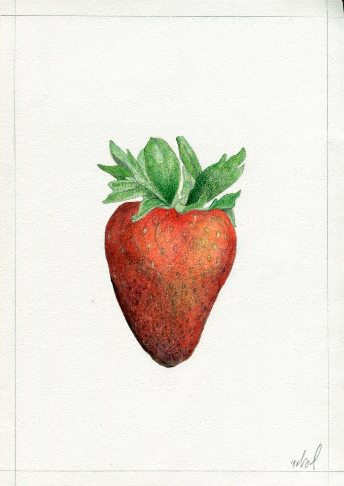 """Strawberry"", for KUCHNIA magazine, by AROBAL, 2014"