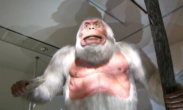 Yeti & Bigfoot Costumes - isleofhalloween.com