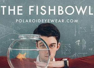 Descubre la historia de Polaroid Eyewear en +Visión El Triangle