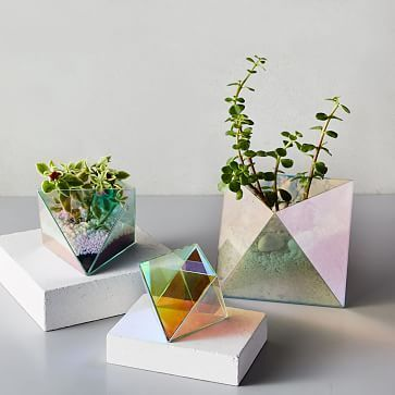 Faceted Glass Terrariums - Iridescent #westelm