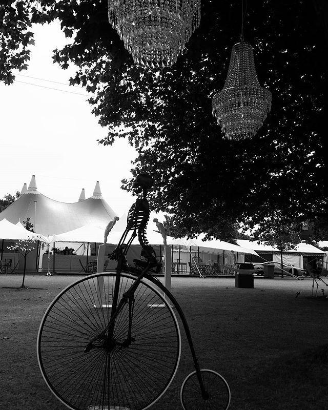 Henley Festival #henley #festival #art #pennyfarthing # Bike #skeleton #tree