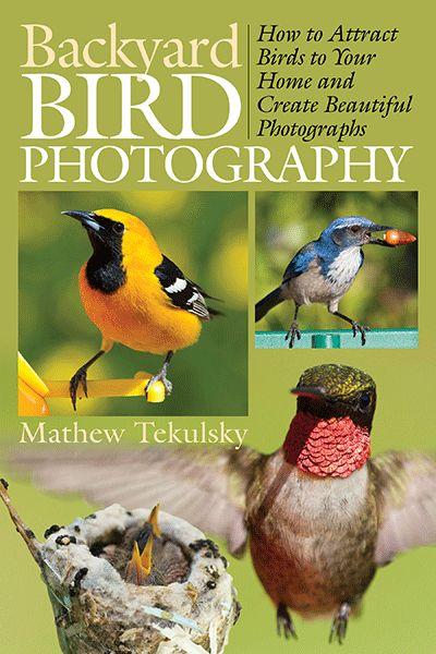 The book on backyard bird photography by Mathew Tekulsky