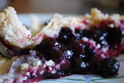 Black raspberry pie- free seasonal wild berries!