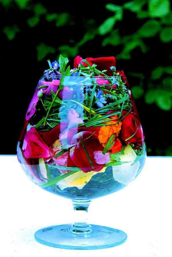 76 Best Images About Edible Flowers For Drinks And