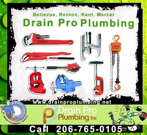 Drain Pro Plumbing Inc : Expert Plumbers and Plumbing  Sewer Services in King County, Pierce County, Snohomish County of Washington. drainproplumbing.net