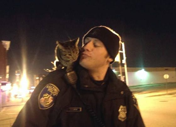 Baltimore officer  and  a  kitten he  made friends with  while on patrol