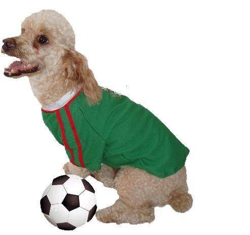 Selección mexicana de Futbol, playera con mangas confeccionada con tela deportiva, cómoda y fresca