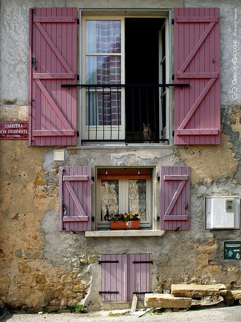 shutters: Windows Doors, Details Windows, Doors Windows, Windows Shutters, Pink Shutters, French Windows, Eyes