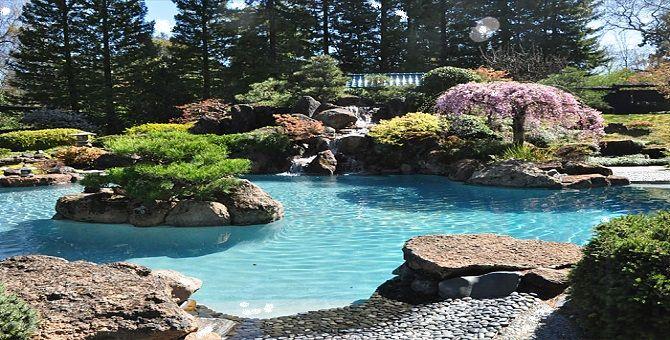 Garden Design Around Swimming Pool