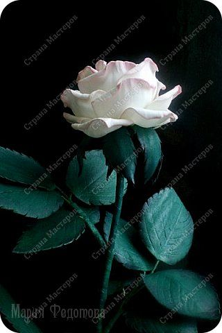 Добрый день,дорогие гости!Продолжаю осваивать так полюбившийся мной фоамиран. Сегодня у меня ирисы бородатые и розы на стебле.Цветы изготовлены для интерьерной композиции,чем буду еще дополнять букет - пока не знаю...размышляю.Вот он - мой красавчик!Такой хорошенький получился - аж пищу от удовольствия! Пока их три...хочу сделать еще несколько - другого цвета. Ирис бородатый изготовлен по МК чудесной мастерицы Марины Ченцовой. Фоамиран иранский.Тонировка масляной пастелью.... фото 13