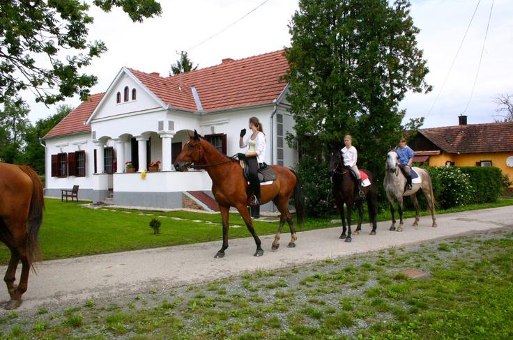 Horsemans,  www.orseg-szallas.hu