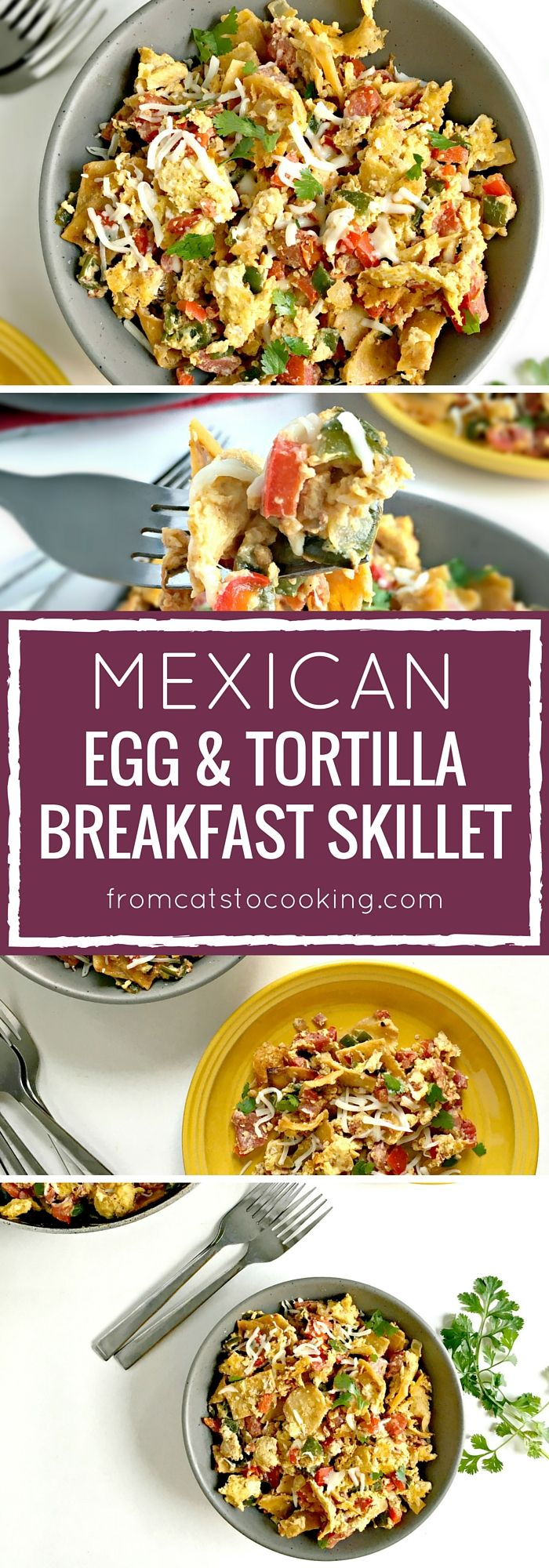 "Mexican food for breakfast? Yep, it's real and oh-so delicious. Also known as ""migas"" in Spanish, this one-pot Mexican Egg & Tortilla Breakfast Skillet is made with crispy corn tortillas, eggs, tomatoes, bell peppers and onions. It's an easy morning meal that's perfect for a big brunch and even makes great leftovers. Corn tortillas areRead more"