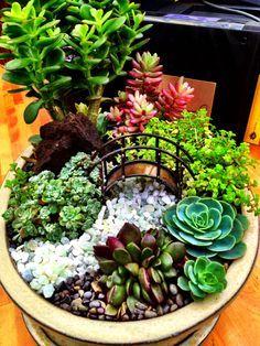 Miniature succulent garden with bridge by Cornell Farm.