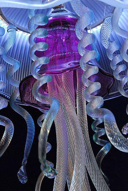 Ocean lights jellyfish