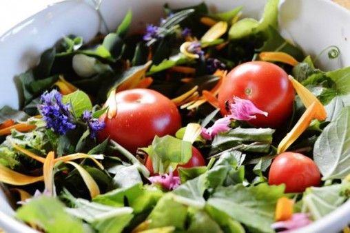 ★ Fiery Red ★ Vastustuskyky – terveenä pysymisen salat https://www.facebook.com/malle.taar/posts/10203725639201635