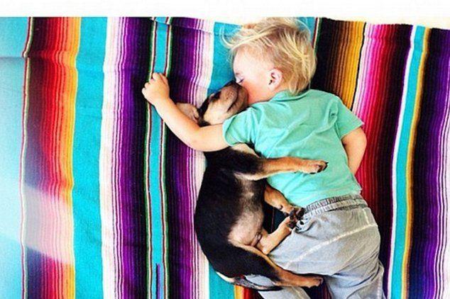 Lucu! Balita dan Anjingnya Tidur Bareng Tiap Hari Seperti Saudara Kandung