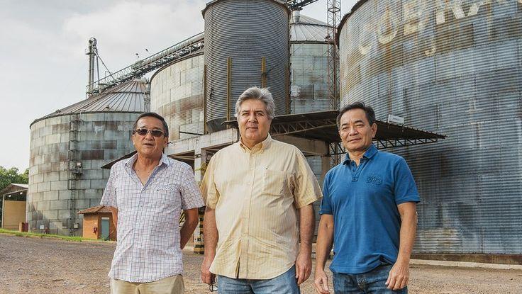 Cooperativa localizada em Araçatuba (SP) terá capacidade de processar 230 toneladas por hora de grãos