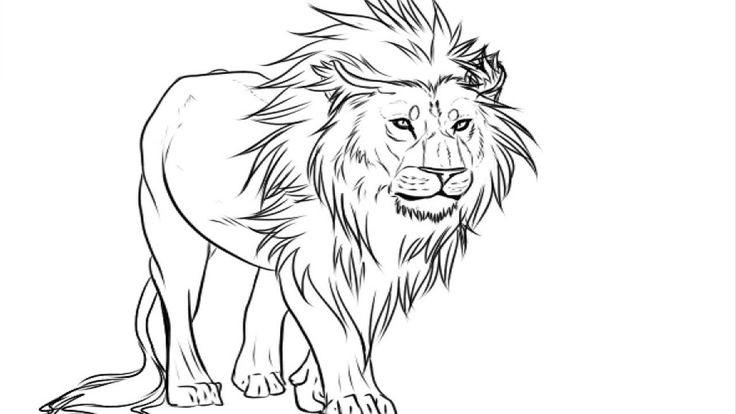 The Best Lion Coloring Pages Ideas For Kids Lion Drawing Lion