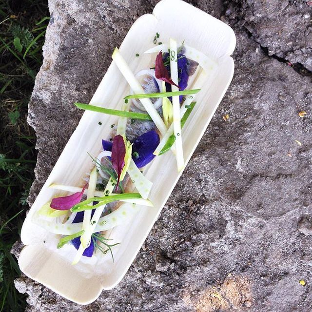 Sneak peek of one of 8 dishes I designed and directed for #meltfoorum2016 happening next Tuesday and prepared by Tervise catering: Baltic herring, fennels and purple potatoes. Who said that conference food should be boring? Excited to work with conference organizers who give as much space to good speakers and workshops as  a thought through dining experience! #conferencefoodistasty #eatwithasmile