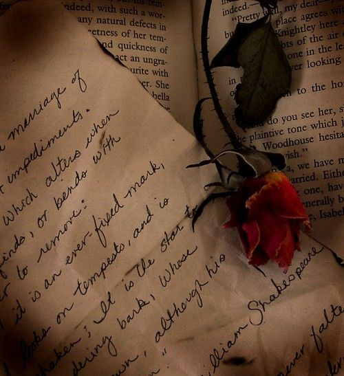 Sometimes I believe i'm a hopeless romantic... I dream that one day she will conivnce me otherwise...