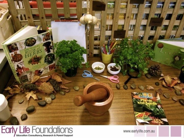 Nature Area/ Science Area/ Sensory Area - fresh herbs and whole spices in a mortar and pestle