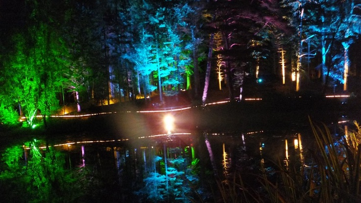 The Enchanted Forest: Pitlochry