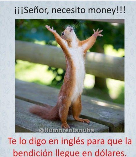 Imagen señor necesito money en álbum memes en español