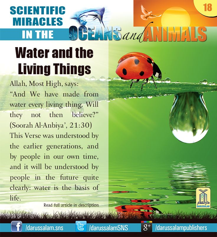 "Water and the Living Things Allah, Most High, says: ""And We have made from water every living thing. Will they not then believe?"" (Soorah Al-Anbiya', 21:30) #ScientificMiraclesInTheOceansAndAnimals #DarussalamPublishers #IslamicEBooks #AmazonKindle #KindleStore #BarnesAndNoble"