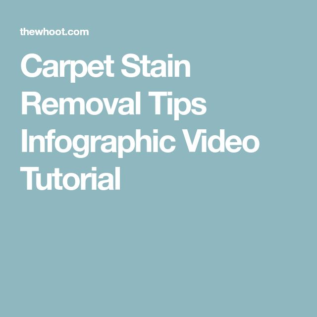 Carpet Stain Removal Tips Infographic Video Tutorial