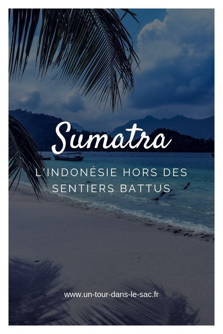 ile sumatra habits