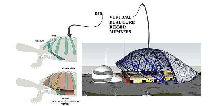 biomimicry architecture thesis